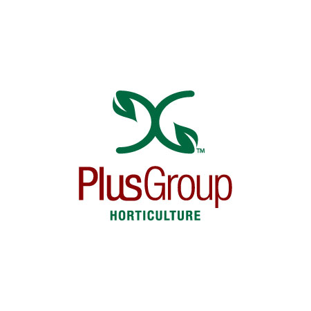 Plus Group of Companies