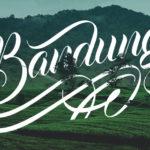 Free Fonts…